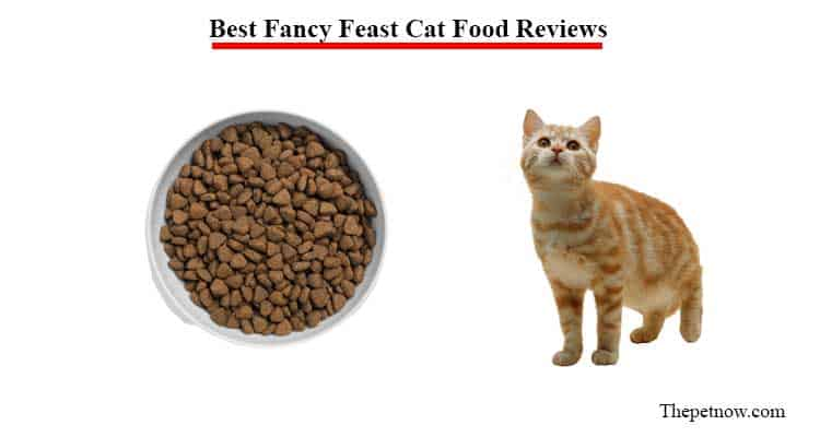 fancy feast cat food reviews