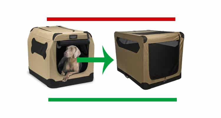 best portable dog crates