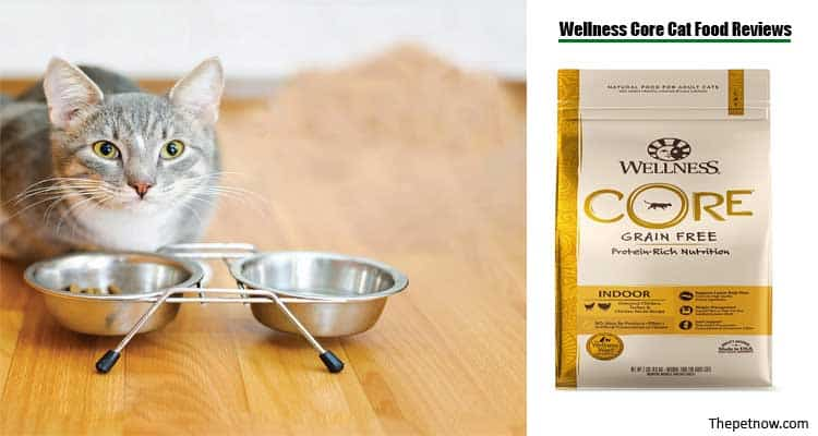 Wellness Core Cat Food Reviews