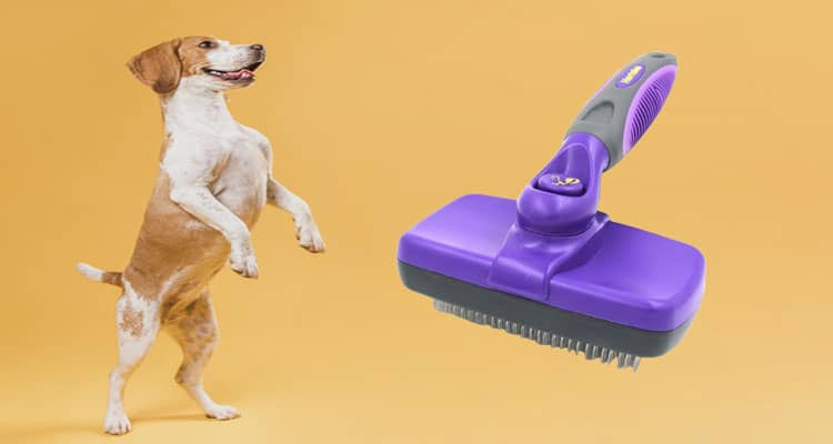 Best Dog Brush For Shedding Short Hair