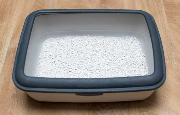 How to Clean Non Clumping Cat Litter